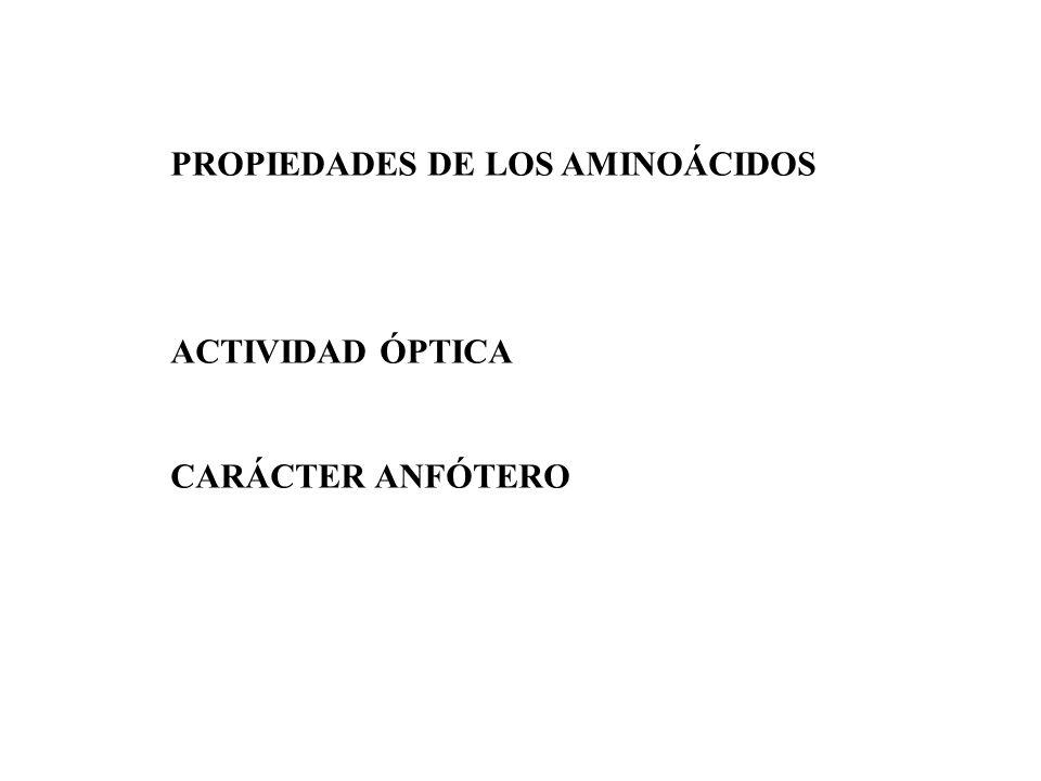 PROPIEDADES DE LOS AMINOÁCIDOS ACTIVIDAD ÓPTICA CARÁCTER ANFÓTERO