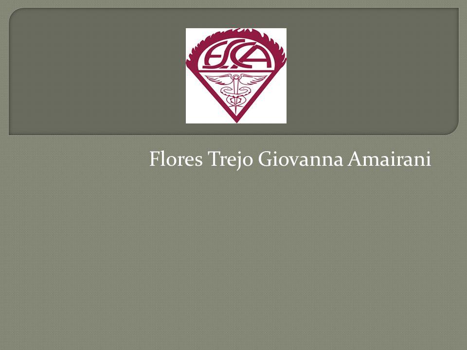 Flores Trejo Giovanna Amairani