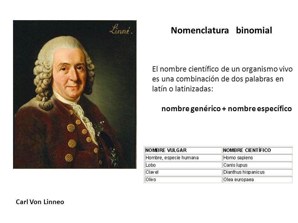 Nomenclatura binomial Carl Von Linneo El nombre científico de un organismo vivo es una combinación de dos palabras en latín o latinizadas: nombre gené
