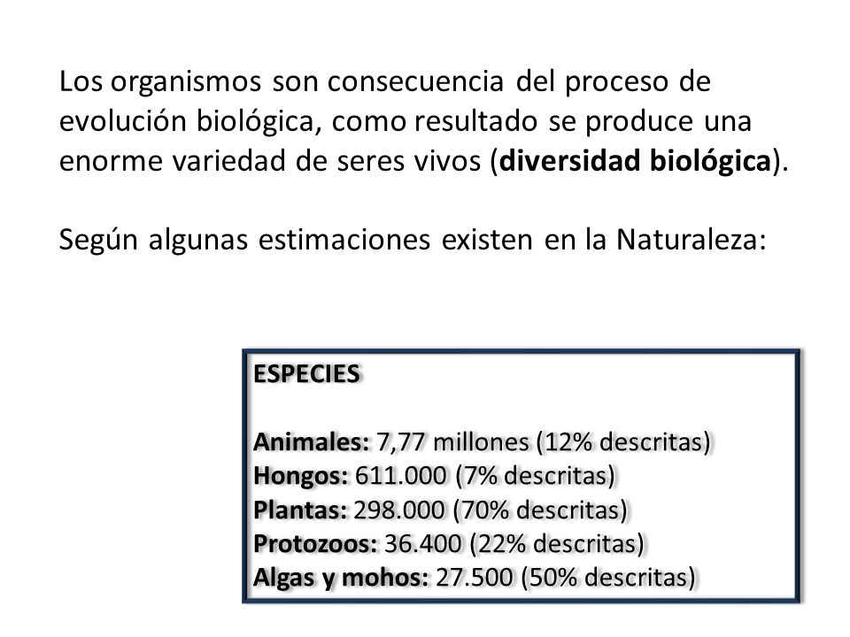 Los organismos son consecuencia del proceso de evolución biológica, como resultado se produce una enorme variedad de seres vivos (diversidad biológica