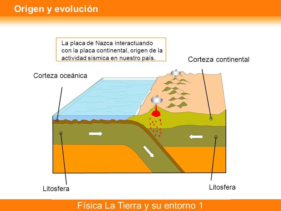 Física La Tierra y su entorno 1 Origen y evolución La placa de Nazca interactuando con la placa continental, origen de la actividad sísmica en nuestro