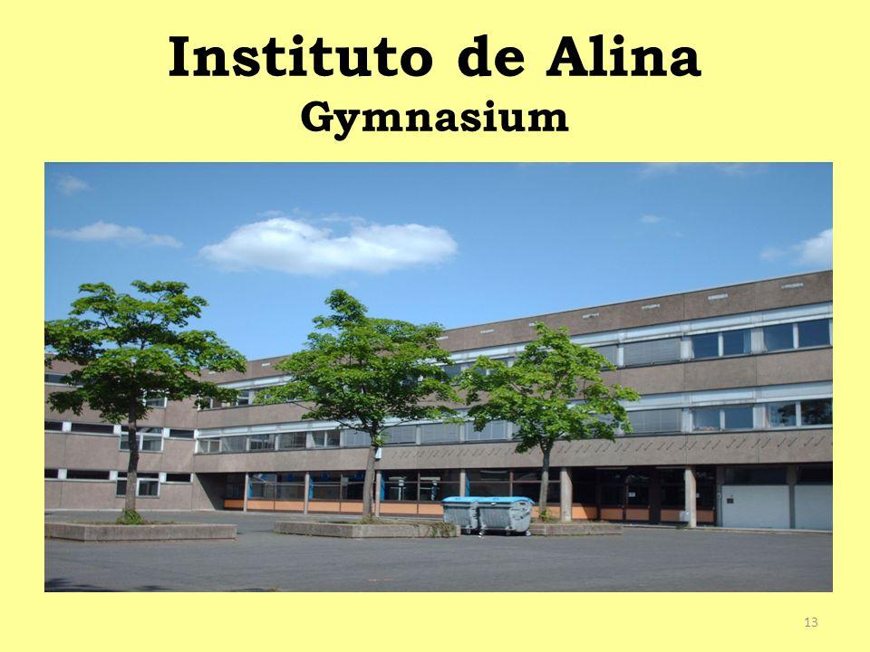 Instituto de Alina Gymnasium 13