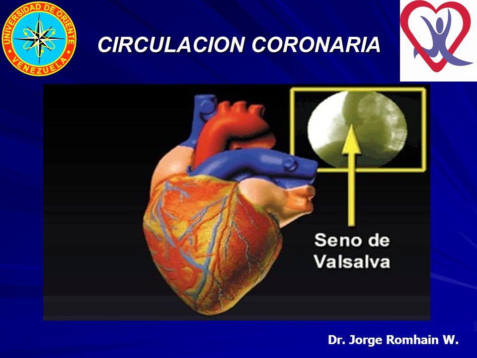 Dr. Jorge Romhain W. CIRCULACION CORONARIA
