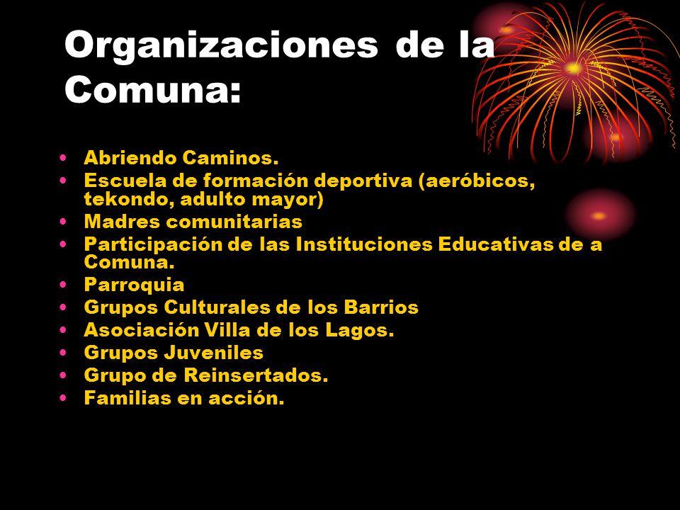 Organizaciones de la Comuna: Abriendo Caminos.