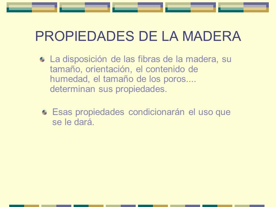PROPIEDADES DE LA MADERA El color es debido a las sales, colorantes y resinas.