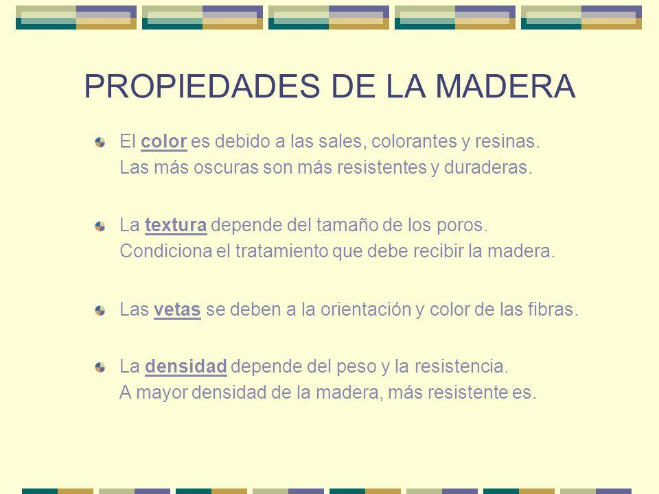 LA INDUSTRIA MADERERA Talado.Actualmente se realiza con sierras mecánicas.