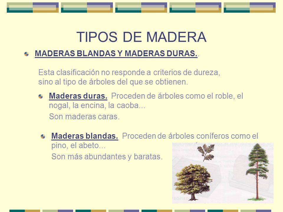 TIPOS DE MADERA MADERAS BLANDAS Y MADERAS DURAS.. Esta clasificación no responde a criterios de dureza, sino al tipo de árboles del que se obtienen. M