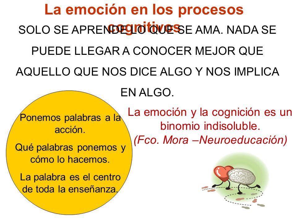 La emoción en los procesos cognitivos SOLO SE APRENDE LO QUE SE A MA. NADA SE PUEDE LLEGAR A CONOC ER MEJOR QUE AQUELLO QUE NOS DICE ALGO Y NOS IMPL I