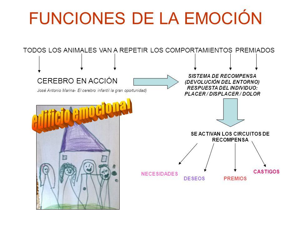 FUNCIONES DE LA EMOCIÓN TODOS LOS ANIMALES VAN A REPETIR LOS COMPORTAMIENTOS PREMIADOS SISTEMA DE RECOMPENSA (DEVOLUCIÓN DEL ENTORNO) RESPUESTA DEL INDIVIDUO: PLACER / DISPLACER / DOLOR CEREBRO EN ACCIÓN José Antonio Marina- El cerebro infantil la gran oportunidad) SE ACTIVAN LOS CIRCUITOS DE RECOMPENSA NECESIDADES CASTIGOS PREMIOSDESEOS