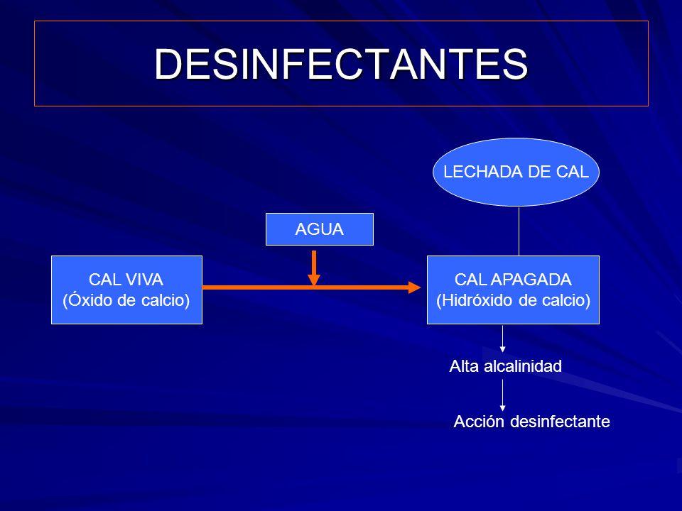 DESINFECTANTES CAL VIVA (Óxido de calcio) CAL APAGADA (Hidróxido de calcio) AGUA Alta alcalinidad Acción desinfectante LECHADA DE CAL