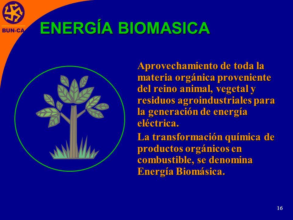 16 Aprovechamiento de toda la materia orgánica proveniente del reino animal, vegetal y residuos agroindustriales para la generación de energía eléctrica.