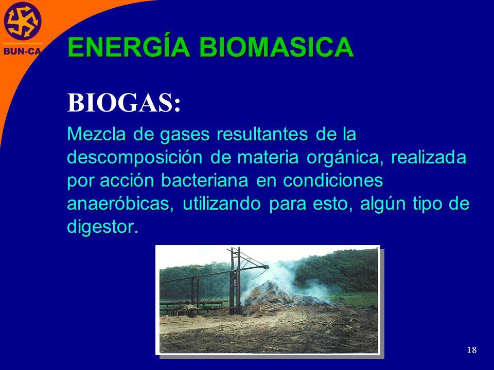 18 Mezcla de gases resultantes de la descomposición de materia orgánica, realizada por acción bacteriana en condiciones anaeróbicas, utilizando para esto, algún tipo de digestor.