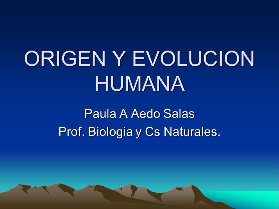 ORIGEN Y EVOLUCION HUMANA Paula A Aedo Salas Prof. Biologia y Cs Naturales.