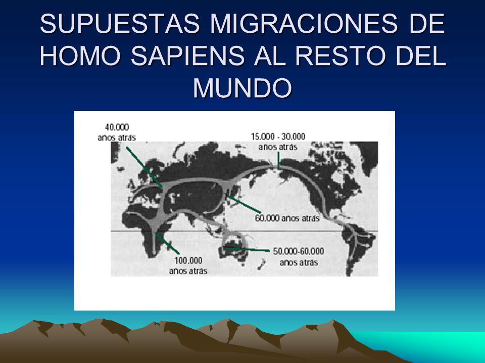 SUPUESTAS MIGRACIONES DE HOMO SAPIENS AL RESTO DEL MUNDO
