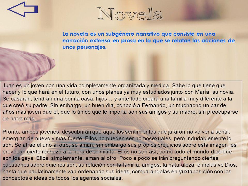 La novela es un subgénero narrativo que consiste en una narración extensa en prosa en la que se relatan las acciones de unos personajes. Juan es un jo