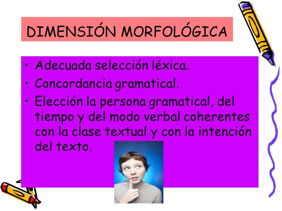 DIMENSIÓN MORFOLÓGICA Adecuada selección léxica.Concordancia gramatical.