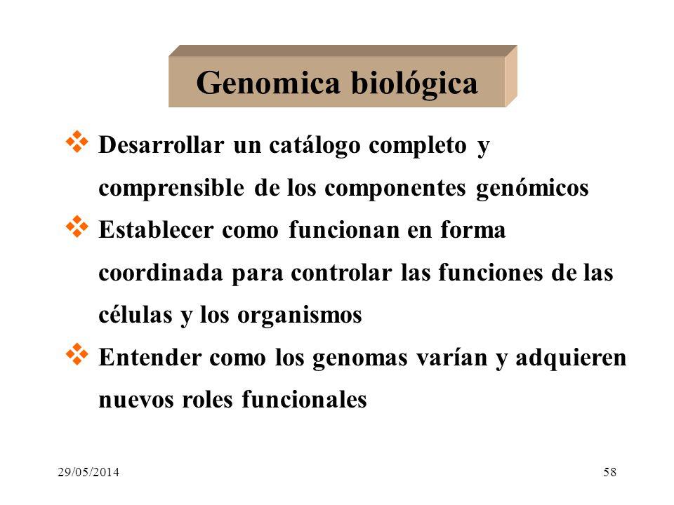 Genómica biológica Genómica y salud Genómica y sociedad 29/05/201457