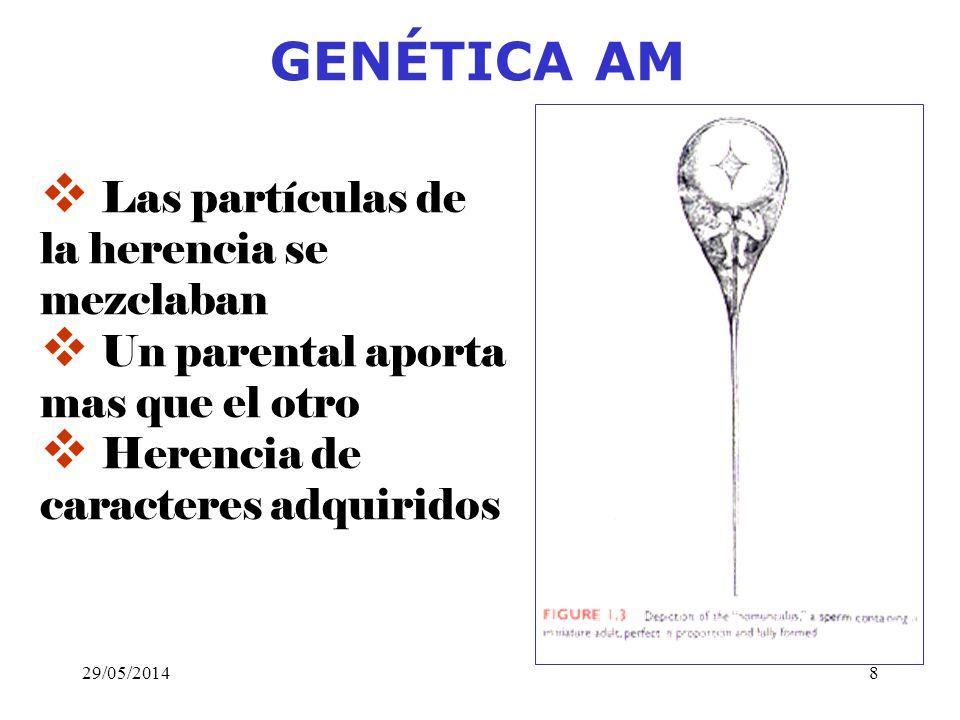 Diminutas partículas de cada parte del cuerpo entran en la sustancia seminal de los padres y al fusionarse crean un nuevo individuo que exhiben rasgos