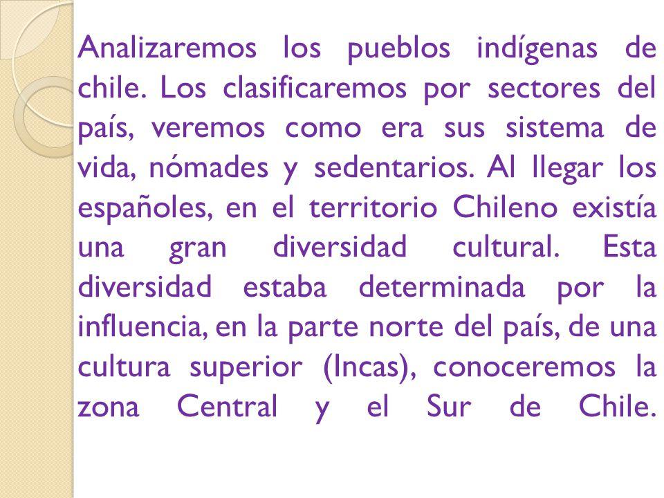 Analizaremos los pueblos indígenas de chile.