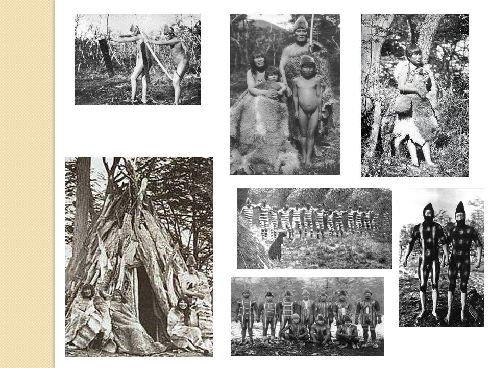 Onas Los selknam u onas eran bandas pedestres que habitaban en gran parte de la Tierra del Fuego, y que basaban su economía en la caza de abundantes guanacos, zorros y aves; sus principales armas fueron el arco y la flecha.