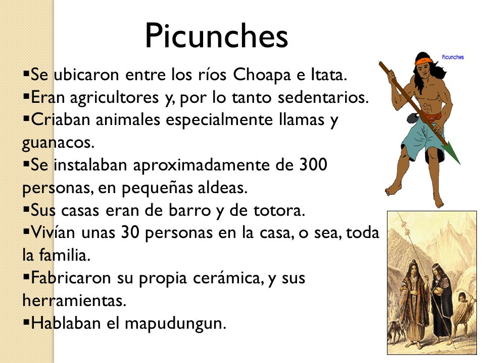1. Picunches 2. Mapuches 3. Huilliches 4. Pehuenches Pueblos zona central www.educarchile.cl/medios/20030716211127.