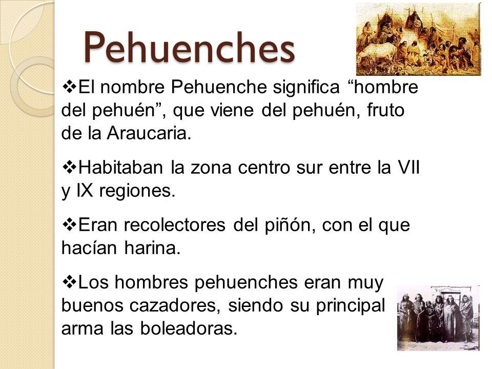 Pehuenches El nombre Pehuenche significa hombre del pehuén, que viene del pehuén, fruto de la Araucaria.
