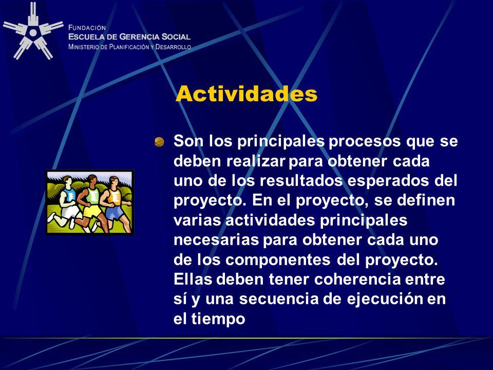 Actividades Son los principales procesos que se deben realizar para obtener cada uno de los resultados esperados del proyecto.