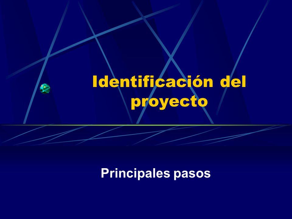 Identificación del proyecto Principales pasos