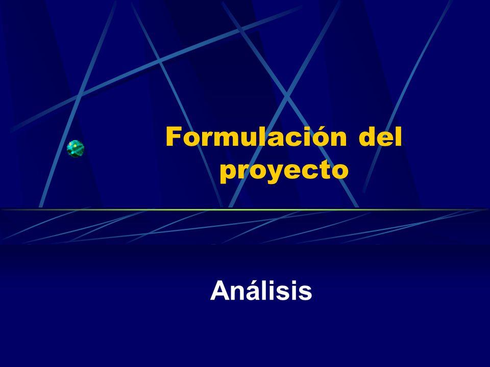 Formulación del proyecto Análisis
