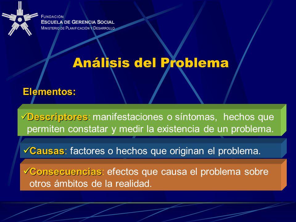 Consecuencias Consecuencias: efectos que causa el problema sobre otros ámbitos de la realidad. Descriptores Descriptores: manifestaciones o síntomas,