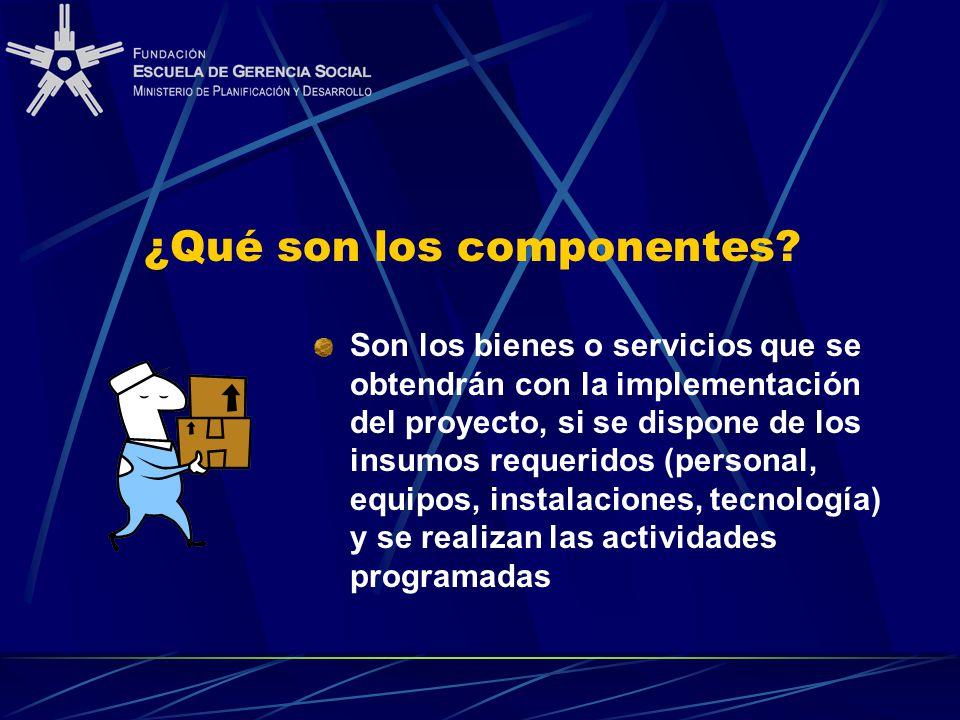 ¿Qué son los componentes? Son los bienes o servicios que se obtendrán con la implementación del proyecto, si se dispone de los insumos requeridos (per