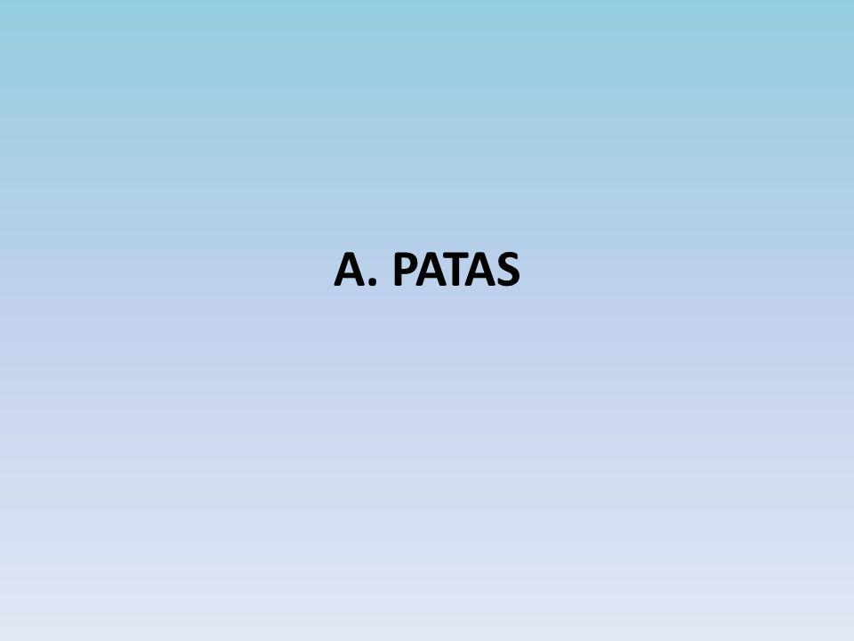 A. PATAS