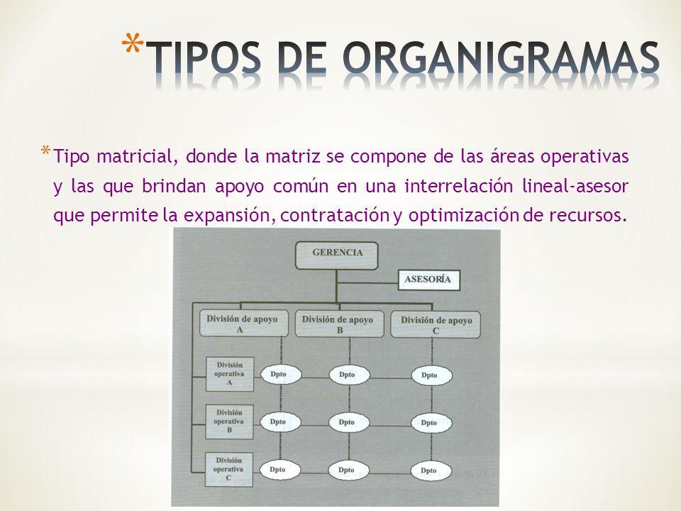 * Tipo matricial, donde la matriz se compone de las áreas operativas y las que brindan apoyo común en una interrelación lineal-asesor que permite la e