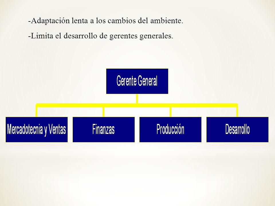 -Adaptación lenta a los cambios del ambiente. -Limita el desarrollo de gerentes generales.