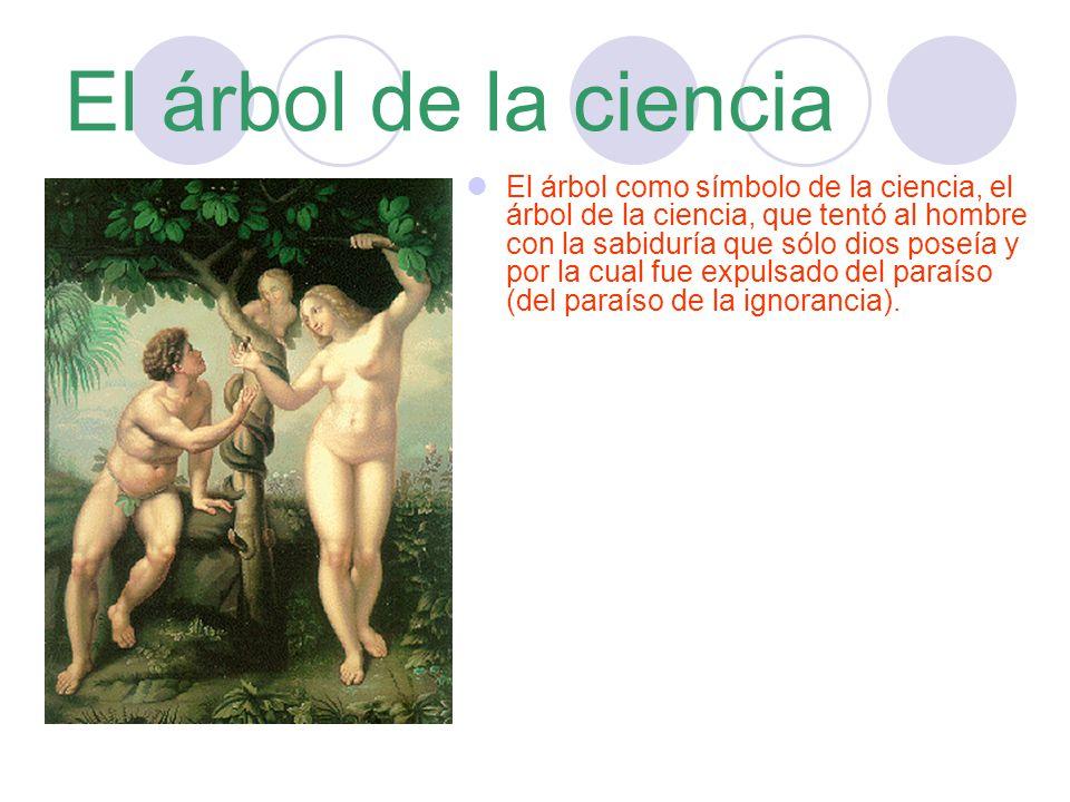 El árbol de la ciencia El árbol como símbolo de la ciencia, el árbol de la ciencia, que tentó al hombre con la sabiduría que sólo dios poseía y por la cual fue expulsado del paraíso (del paraíso de la ignorancia).