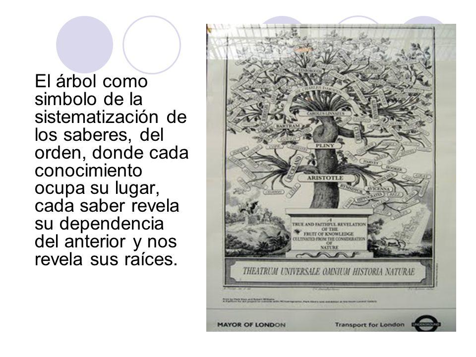 El árbol como simbolo de la sistematización de los saberes, del orden, donde cada conocimiento ocupa su lugar, cada saber revela su dependencia del an