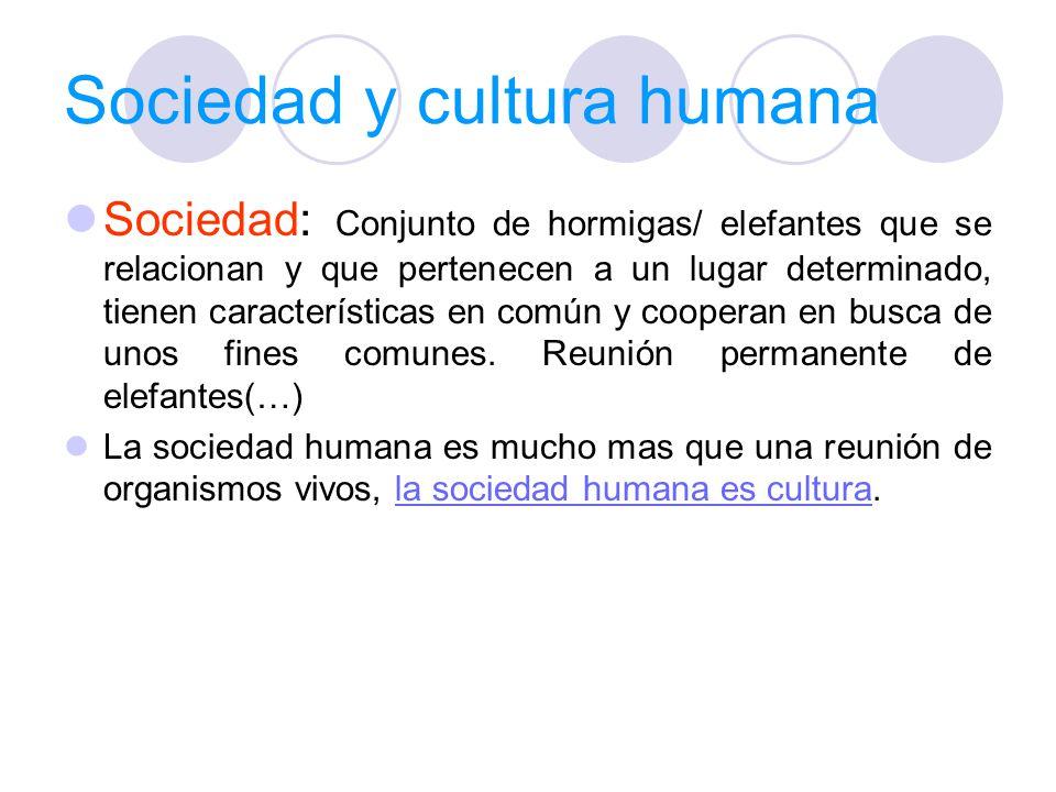 Sociedad y cultura humana Sociedad: Conjunto de hormigas/ elefantes que se relacionan y que pertenecen a un lugar determinado, tienen características en común y cooperan en busca de unos fines comunes.