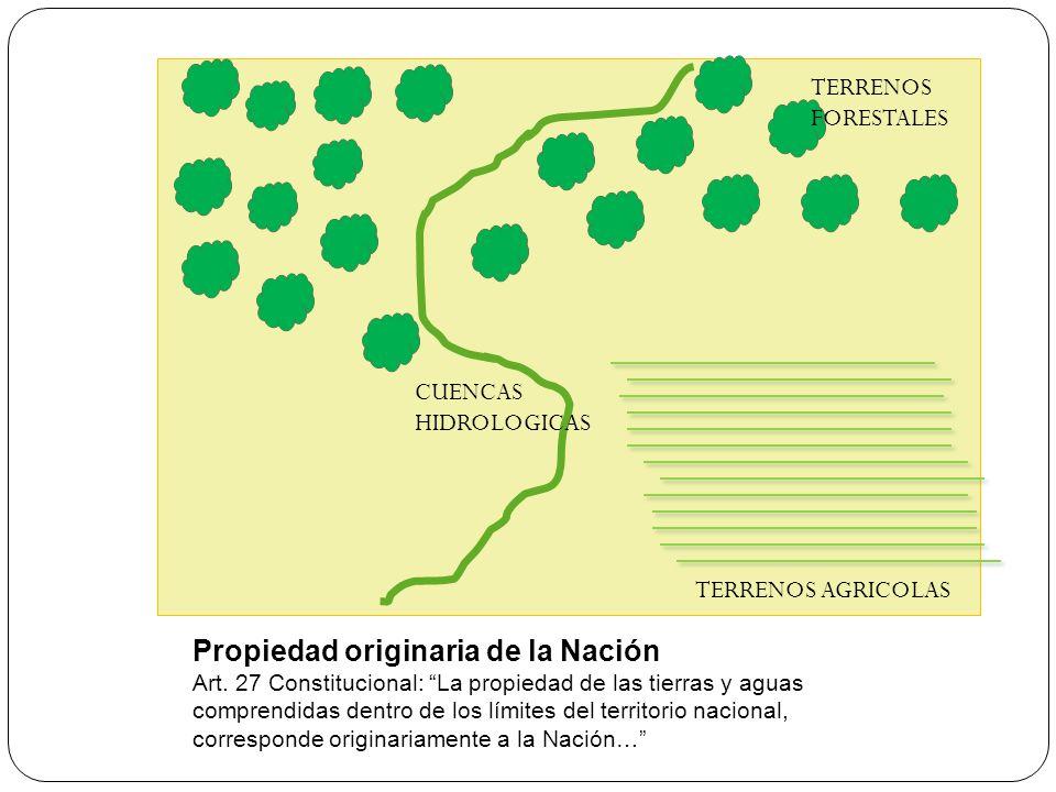 Propiedad originaria de la Nación Art. 27 Constitucional: La propiedad de las tierras y aguas comprendidas dentro de los límites del territorio nacion