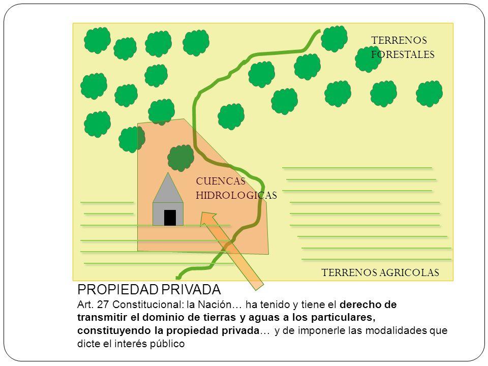 PROPIEDAD PRIVADA Art. 27 Constitucional: la Nación… ha tenido y tiene el derecho de transmitir el dominio de tierras y aguas a los particulares, cons