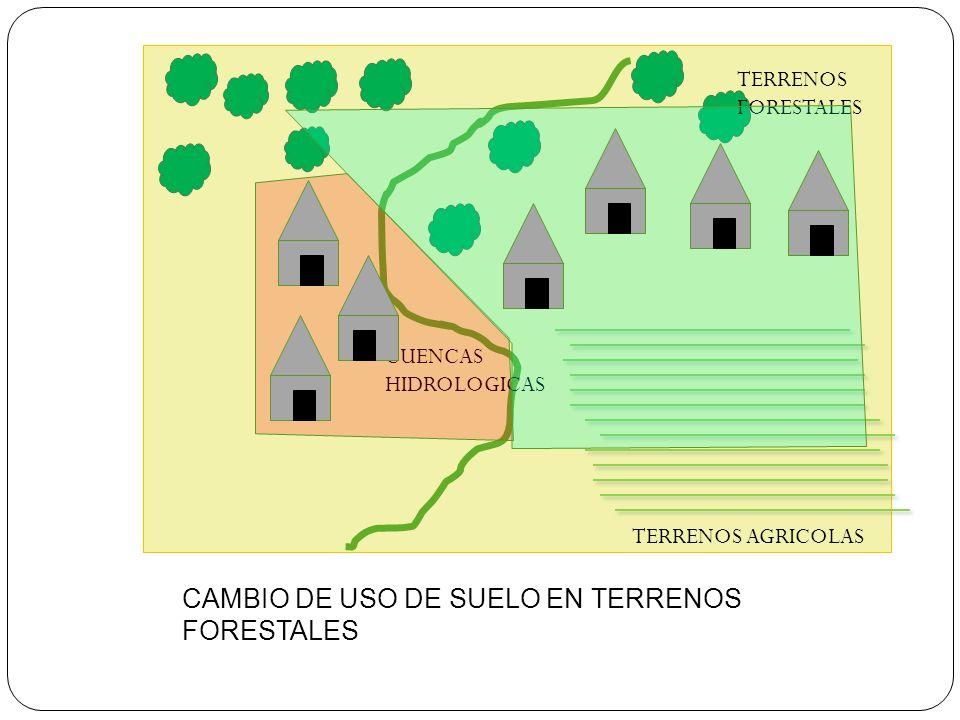 CAMBIO DE USO DE SUELO EN TERRENOS FORESTALES TERRENOS FORESTALES TERRENOS AGRICOLAS CUENCAS HIDROLOGICAS