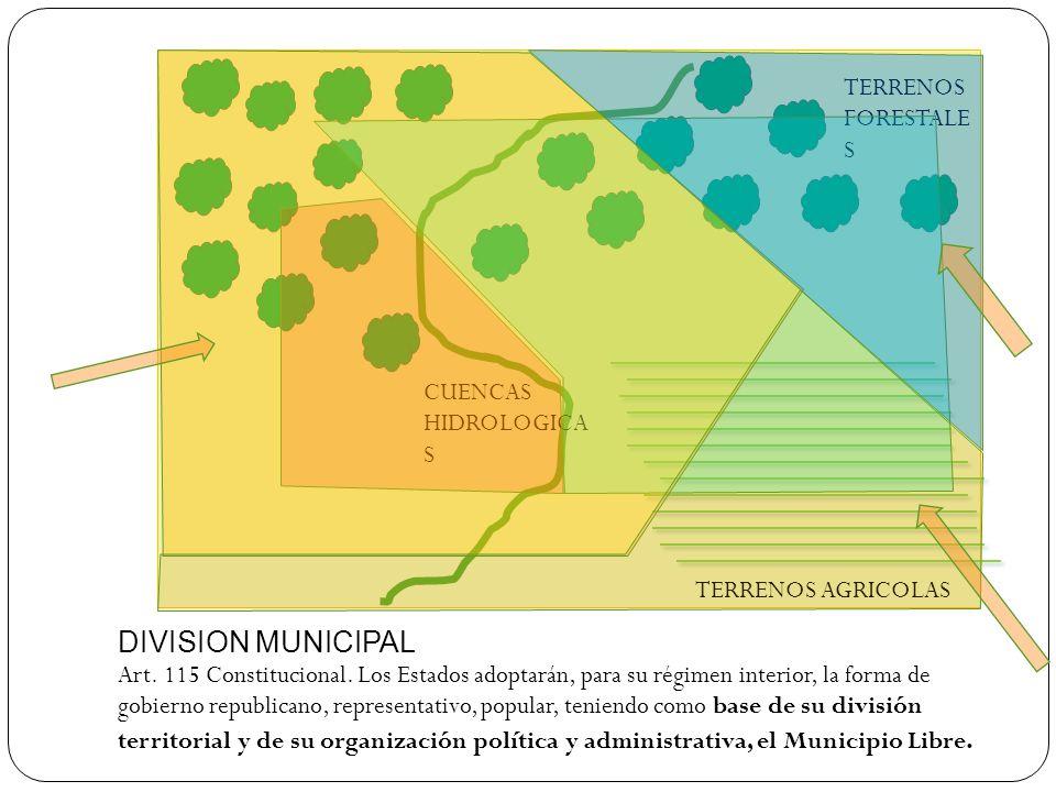DIVISION MUNICIPAL Art. 115 Constitucional. Los Estados adoptarán, para su régimen interior, la forma de gobierno republicano, representativo, popular