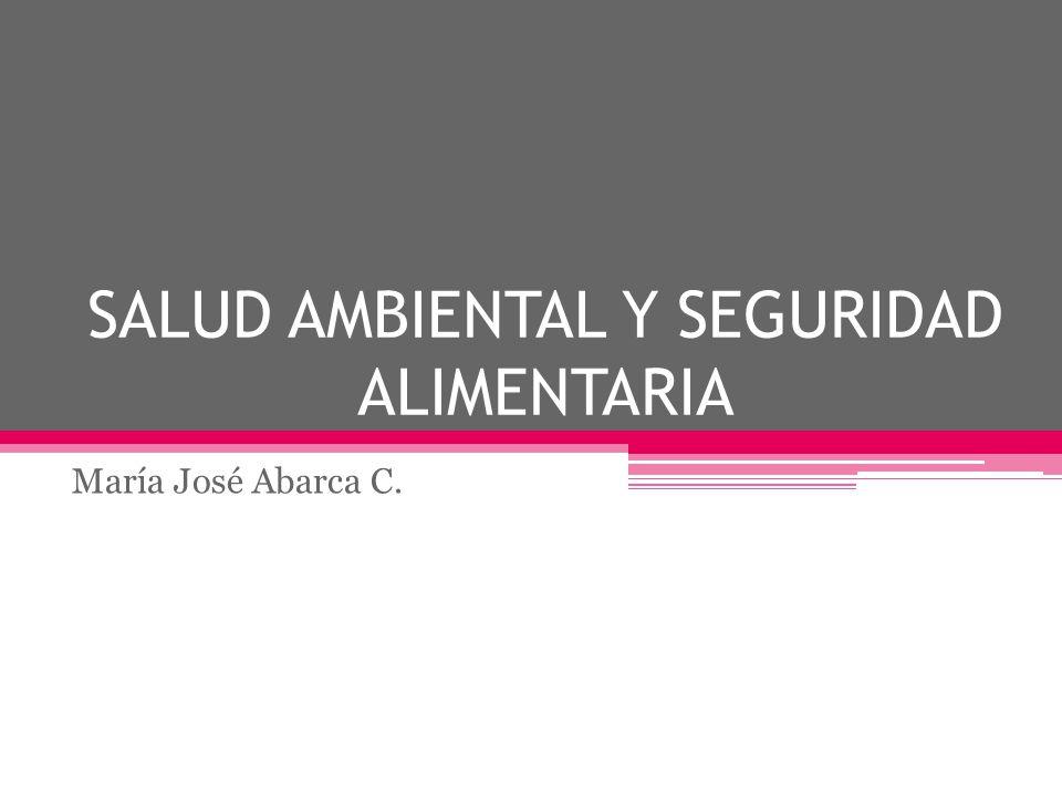 SALUD AMBIENTAL Y SEGURIDAD ALIMENTARIA María José Abarca C.
