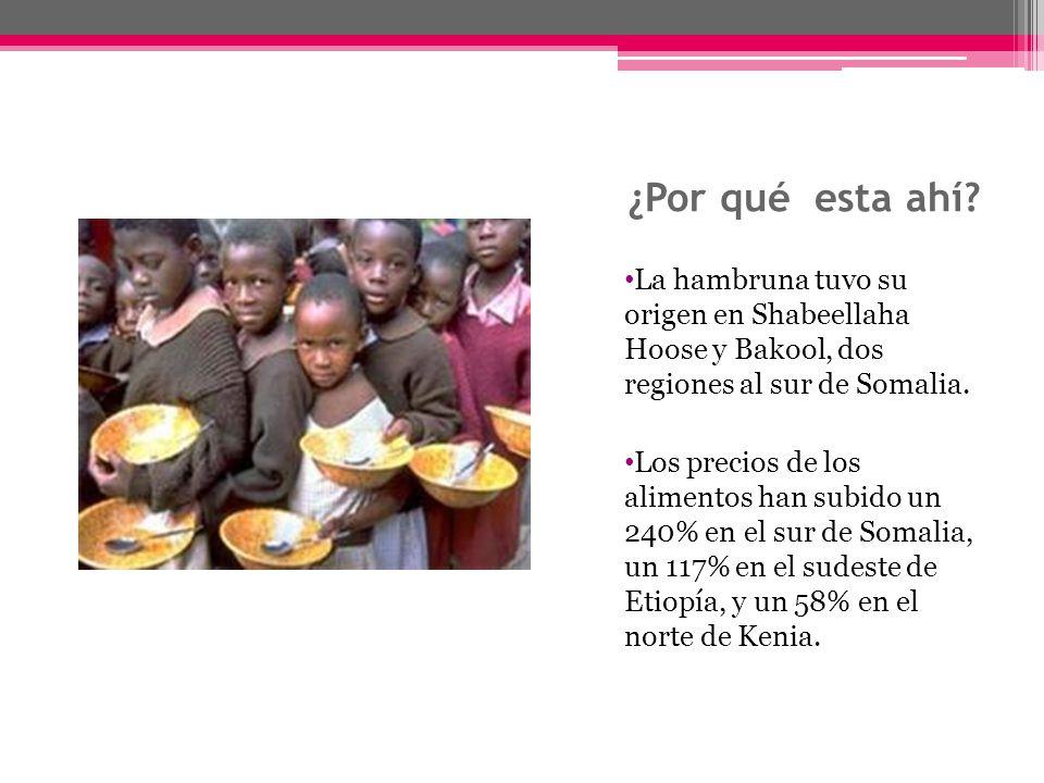 ¿Por qué esta ahí? La hambruna tuvo su origen en Shabeellaha Hoose y Bakool, dos regiones al sur de Somalia. Los precios de los alimentos han subido u
