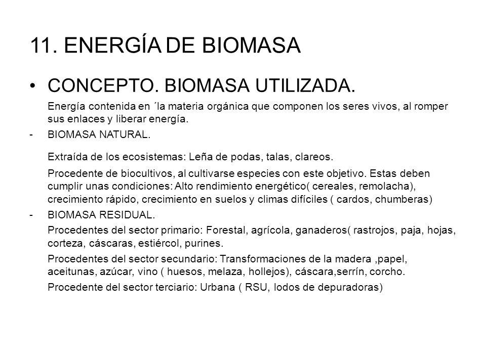 11.ENERGÍA DE BIOMASA CONCEPTO. BIOMASA UTILIZADA.