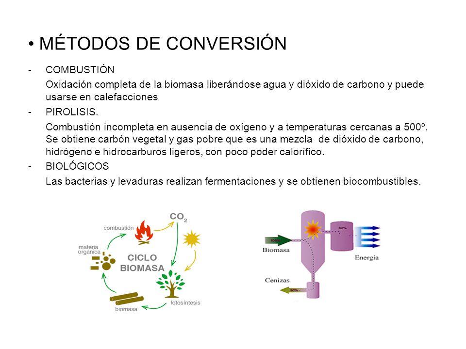 MÉTODOS DE CONVERSIÓN -COMBUSTIÓN Oxidación completa de la biomasa liberándose agua y dióxido de carbono y puede usarse en calefacciones -PIROLISIS.