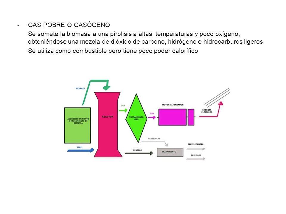 -GAS POBRE O GASÓGENO Se somete la biomasa a una pirolisis a altas temperaturas y poco oxígeno, obteniéndose una mezcla de dióxido de carbono, hidrógeno e hidrocarburos ligeros.