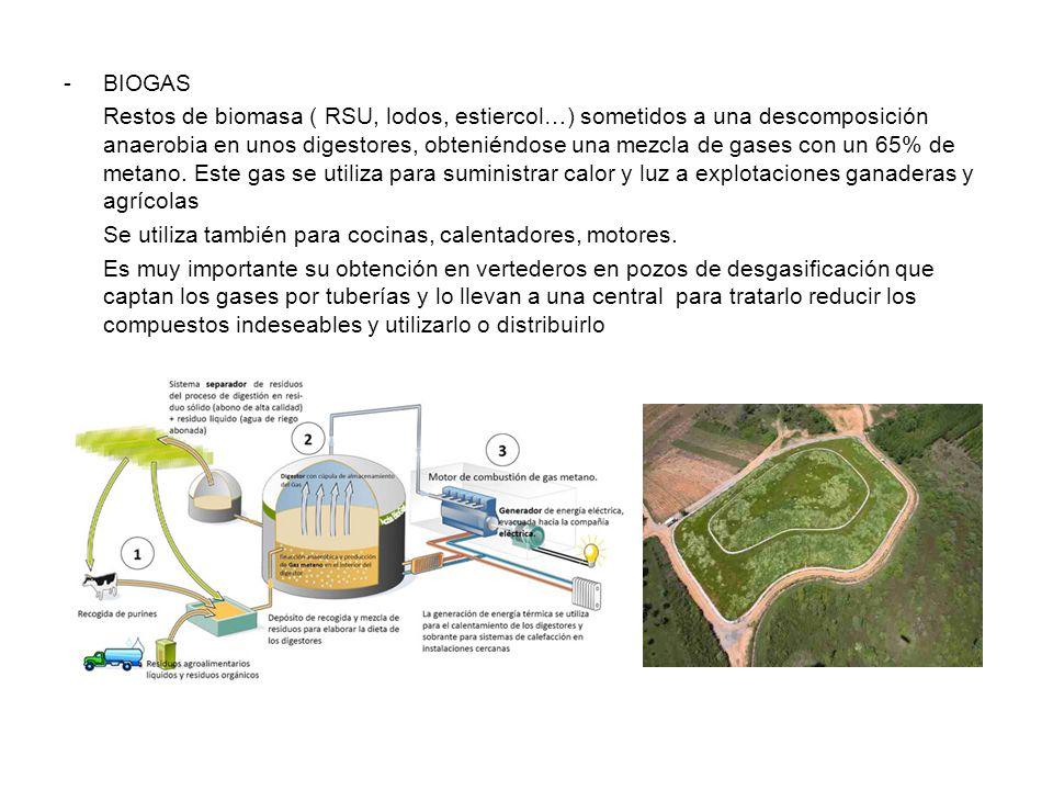 -BIOGAS Restos de biomasa ( RSU, lodos, estiercol…) sometidos a una descomposición anaerobia en unos digestores, obteniéndose una mezcla de gases con un 65% de metano.
