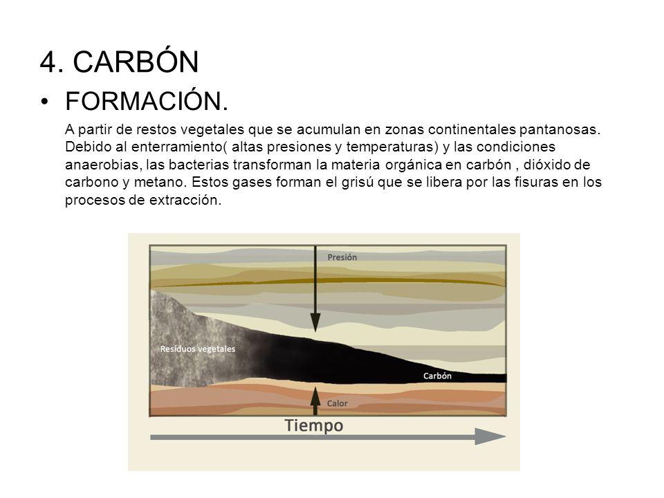 4.CARBÓN FORMACIÓN.