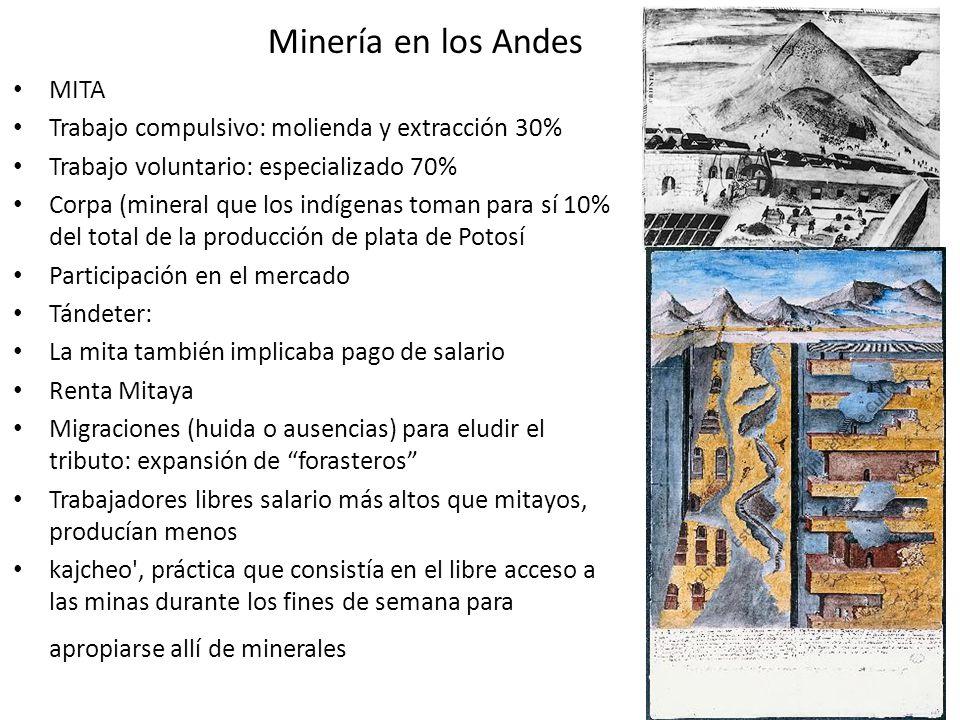 Minería en los Andes MITA Trabajo compulsivo: molienda y extracción 30% Trabajo voluntario: especializado 70% Corpa (mineral que los indígenas toman p