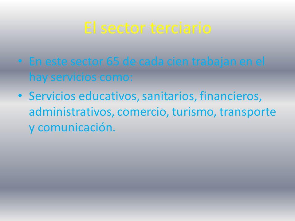El sector terciario En este sector 65 de cada cien trabajan en el hay servicios como: Servicios educativos, sanitarios, financieros, administrativos, comercio, turismo, transporte y comunicación.